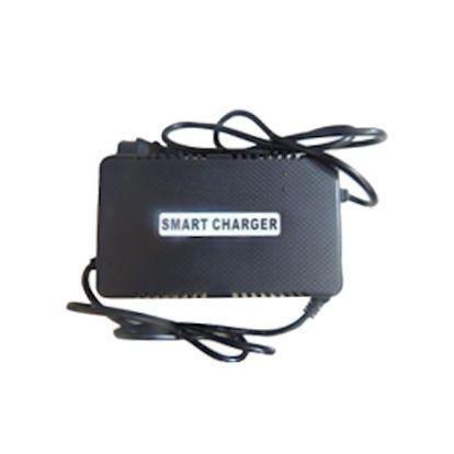 CHARGER 80 Volt